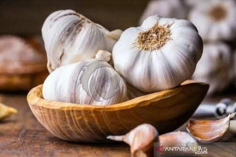bawang putih tembus Rp48.000/kg