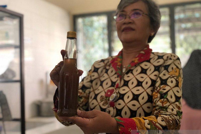 Kembangkan kampung sayur, warga Yogyakarta membuat sirup jahe