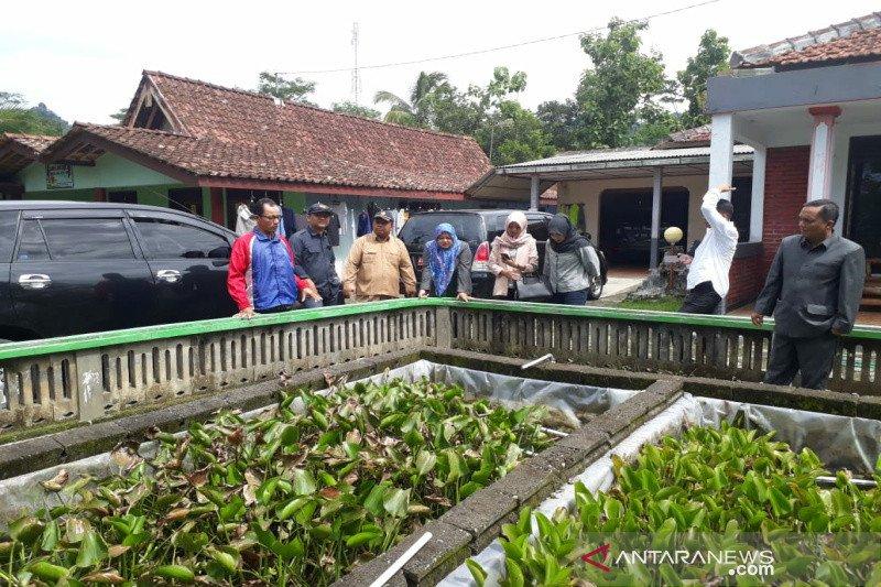 DKP Kulon Progo diminta kembangkan sentra budi daya ikan beong