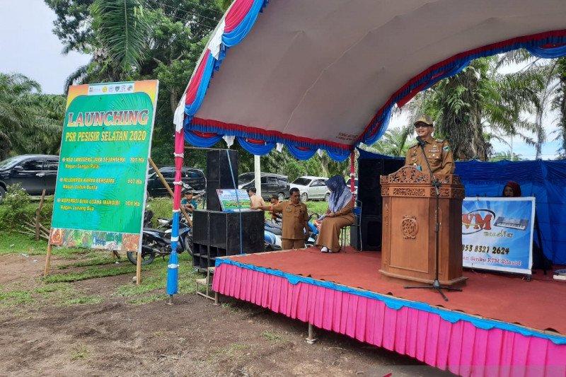 Dibantu Kemenkeu, 358 hektare lahan perkebunan sawit Pesisir Selatan diremajakan