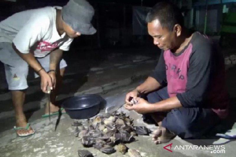 Cegah virus corona, China segera larang dagang dan konsumsi hewan liar