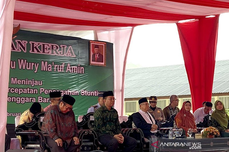 Wapres Maruf Amin larang pernikahan dini untuk cegah stunting