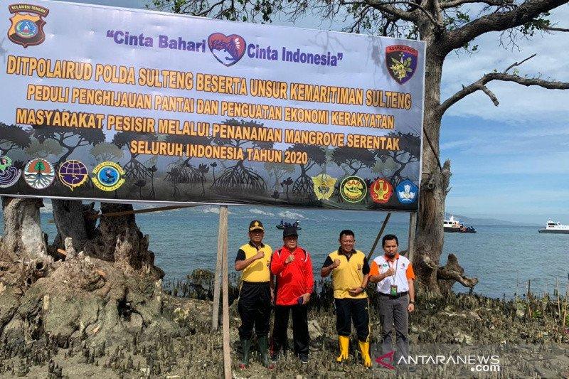 Polda tanam ribuan mangrove di bekas tsunami Palu