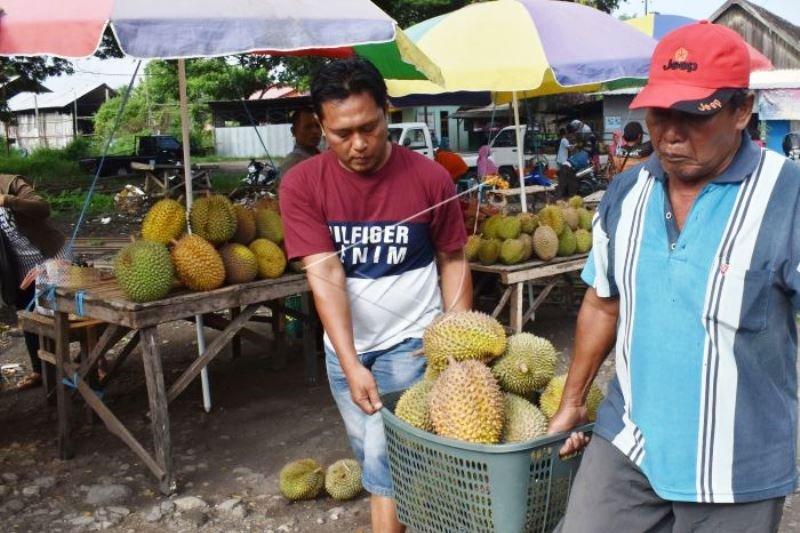 Penjual Musiman Durian Lokal
