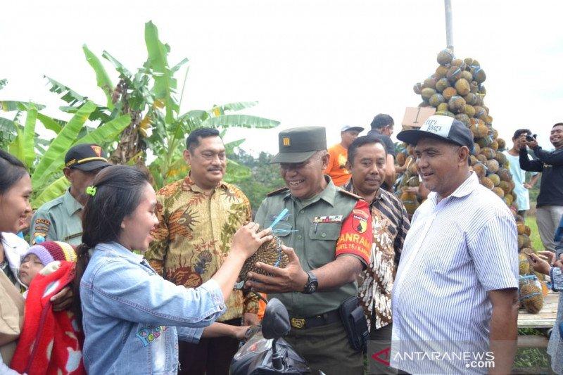 Warga berebut durian gratis