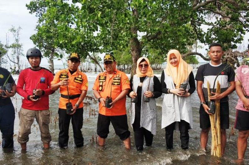 Basarnas Mamuju tanam pohon bakau untuk cegah abrasi