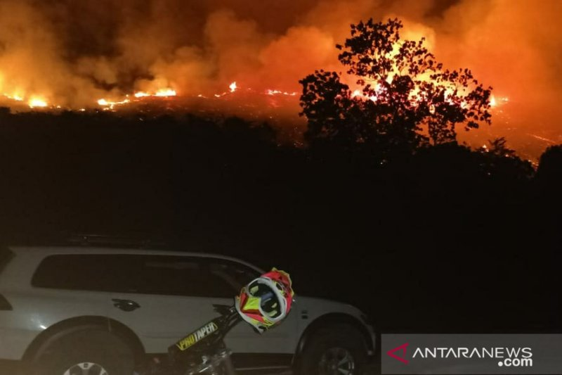 Kebakaran hutan  di Salakan, Kabupaten Banggai Kepulauan