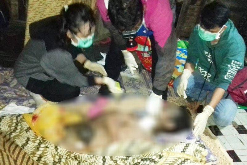 Istri temukan mayat suami dengan alat kelamin terpotong dan usus terburai di Pulpis