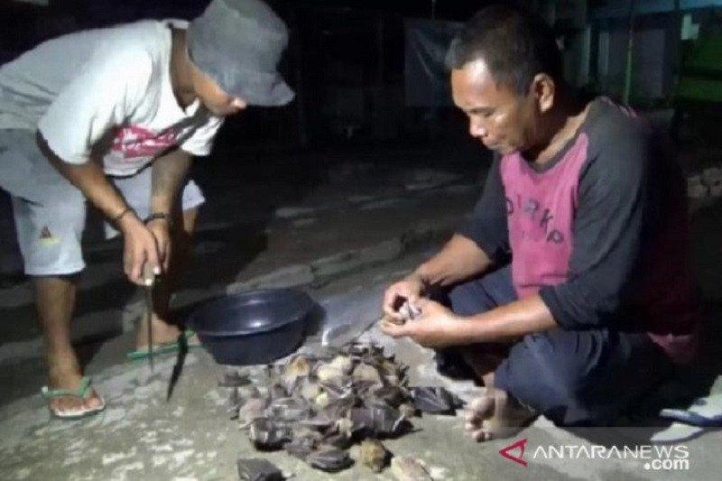China akan larang dagang dan konsumsi hewan liar untuk cegah COVID-19