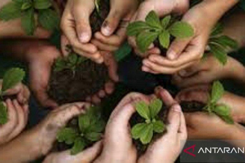 Mahasiswa UKIT membangun kesadaran warga minut jaga lingkungan