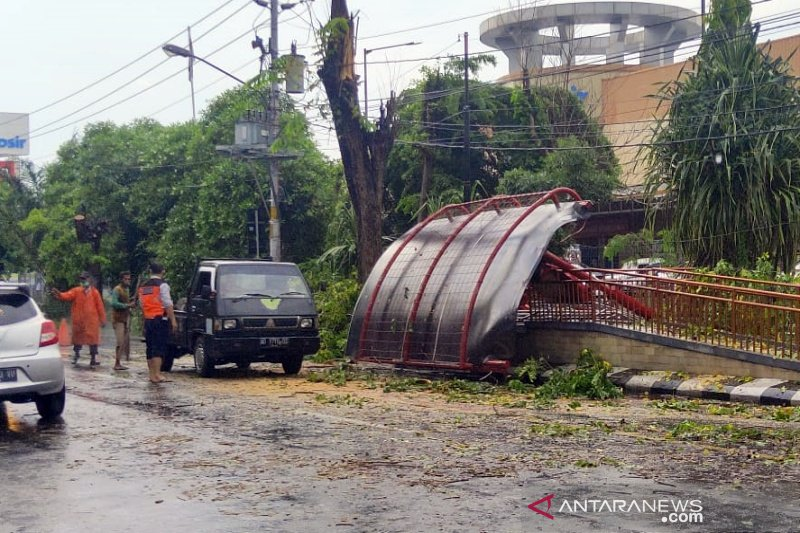Pohon tumbang timpa halte  bus Batik Solo Trans