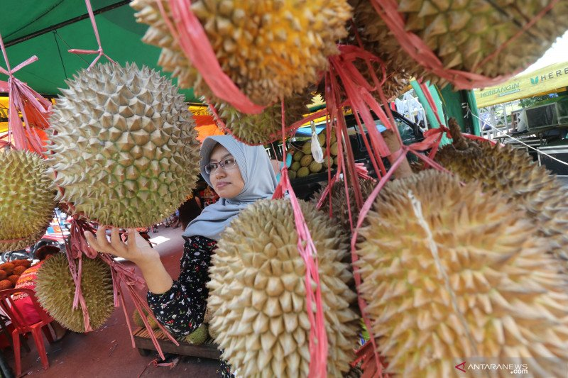 Manfaat terapi Durian
