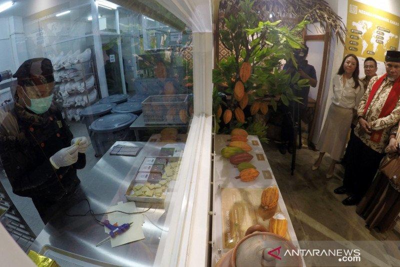 """L'ile Chocolate"" diharapkan dorong pertanian kakao di Padang"