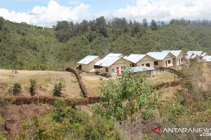 Distan Jayawijaya dorong pemeliharaan ternak babi secara modern