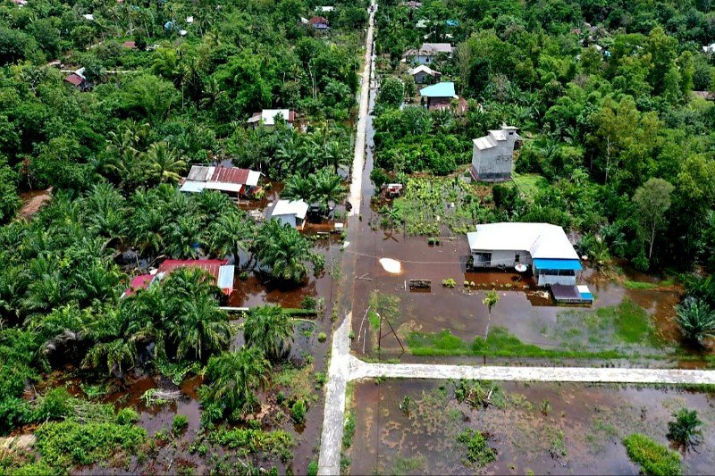Ratusan hektare lahan pertanian dan perkebunan di Pulpis terendam banjir