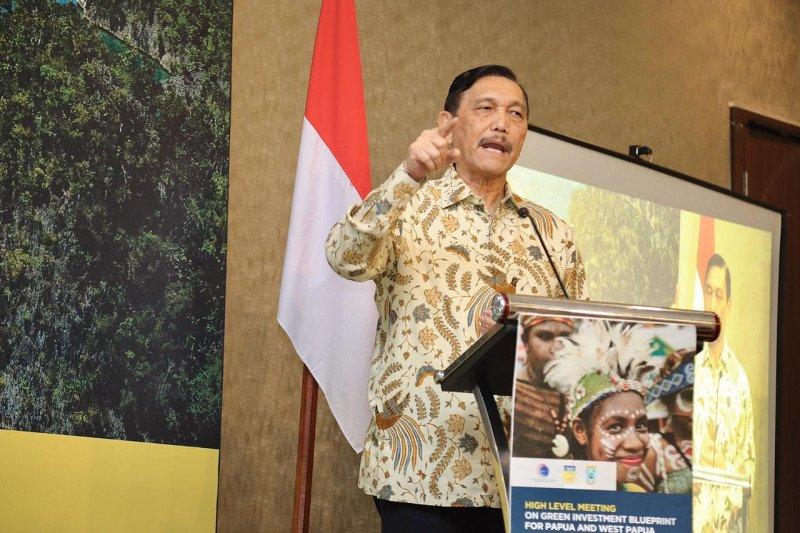 Luhut luncurkan konsep investasi hijau untuk Papua dan Papua Barat