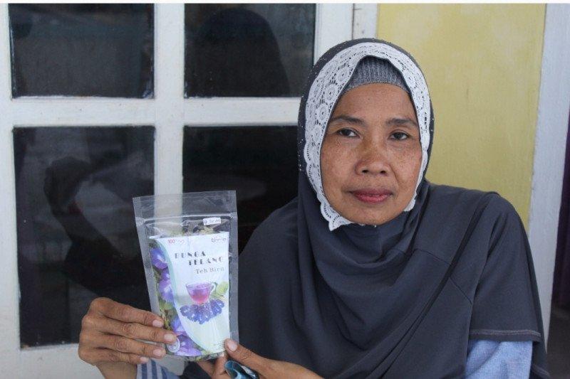 Manfaatkan lahan sempit, KWT buat produk unggulan teh bunga telang