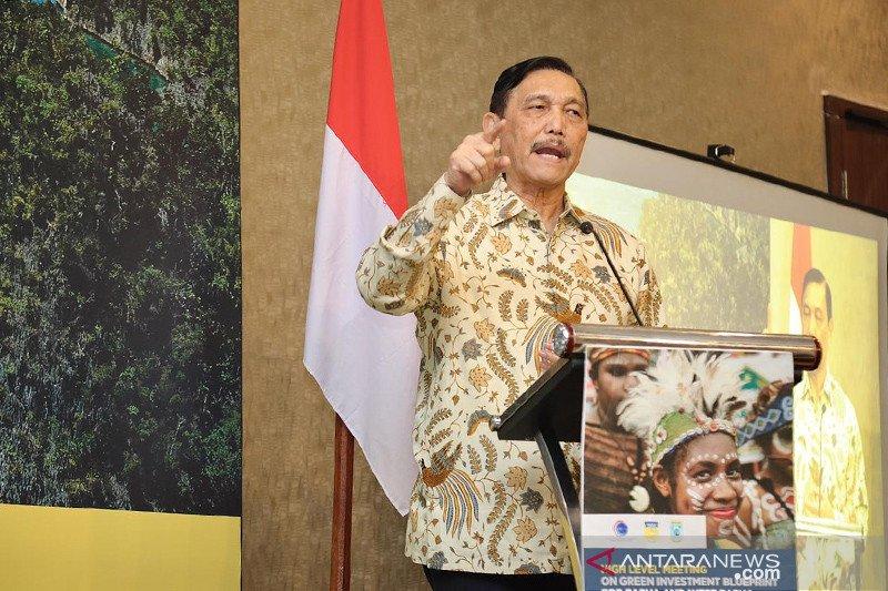 Presiden Jokowi tunjuk Luhut Panjaitan sebagai Menteri Perhubungan ad interim