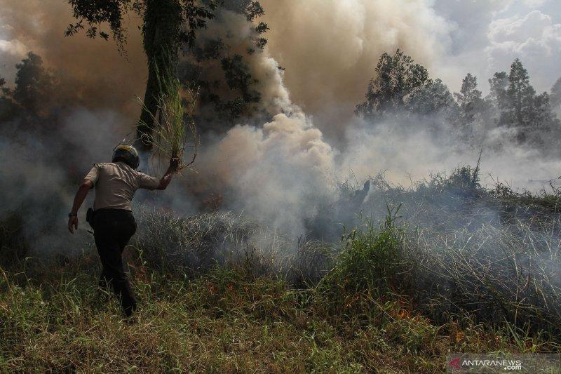"""Titik panas Karhutla masih """"kepung"""" pesisir Riau"""