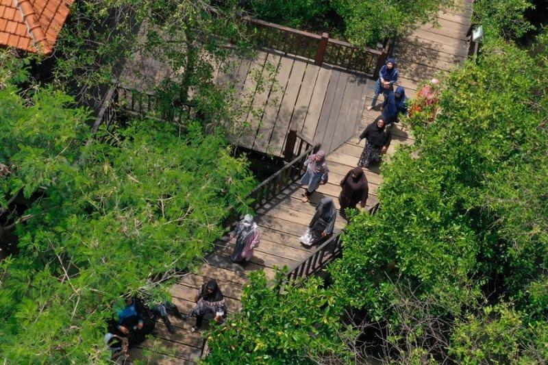 Pengunjung taman hutan raya dilarang bawa plastik