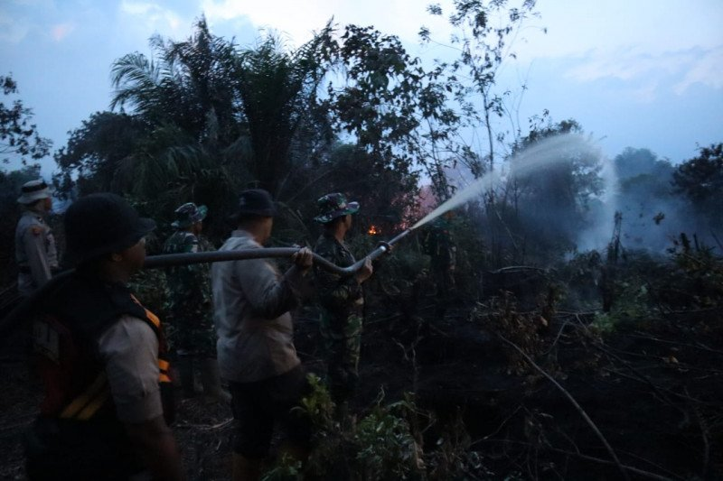 Tim Gabungan padamkan kebakaran lahan gambut hingga malam di Inhil
