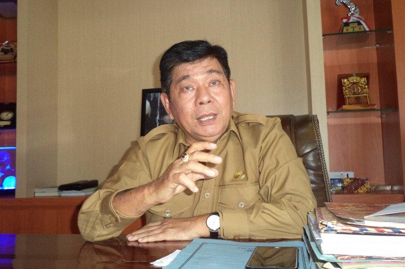 Ribuan ekor ternak babi di Kabupaten Kupang mati akibat virus ASF