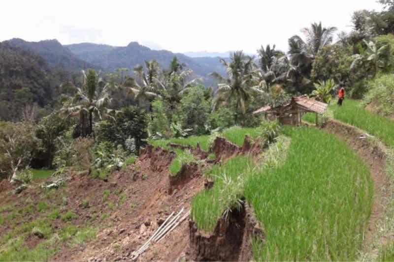 BPBD Kuningan: longsor dominasi bencana pada musim hujan