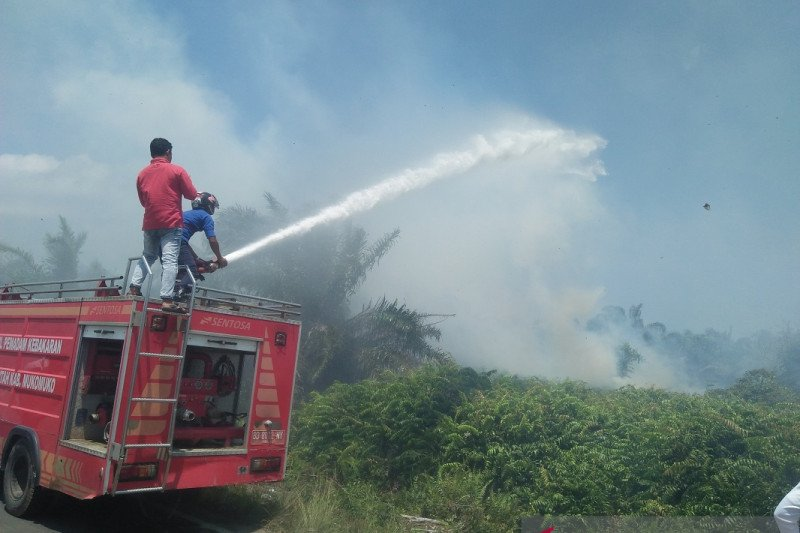 Warga keluhkan asap kebakaran lahan gambut