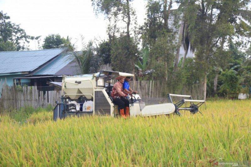 Bank Kalsel dukung pengembangan sektor pertanian Tala