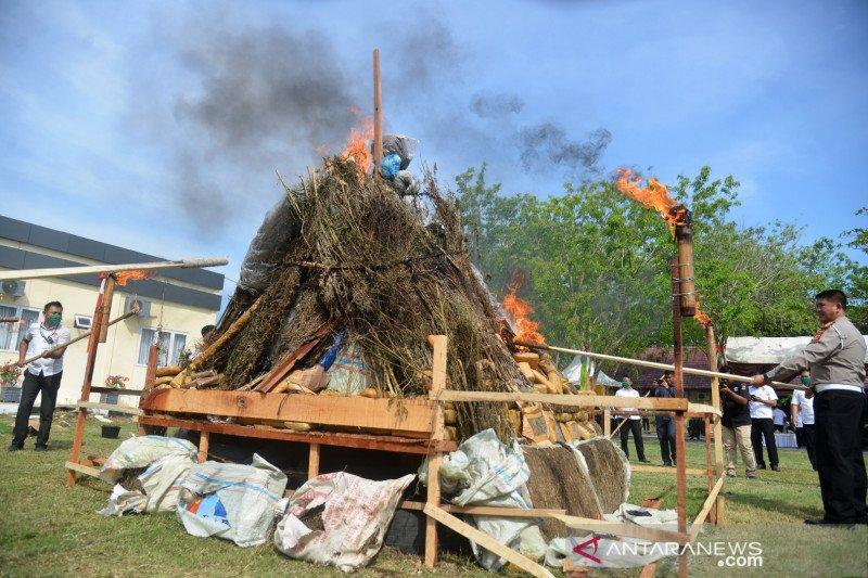 Satu ton ganja dan puluhan kilogram sabu di Aceh dimusnahkan