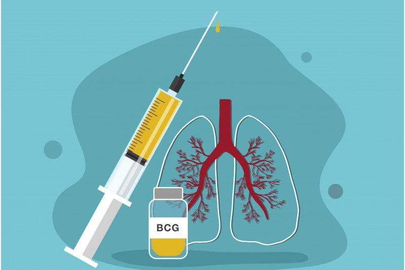 Brazil uji keampuhan vaksin BCG untuk pengobatan COVID-19