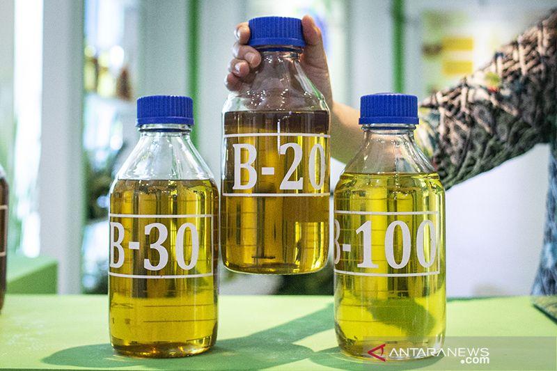 Mulai Juli ini harga bahan bakar nabati ditetapkan Rp7.321/liter