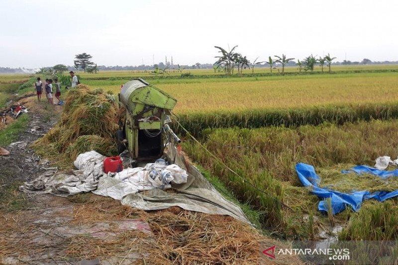 Empat buruh tani meninggal akibat tersambar petir