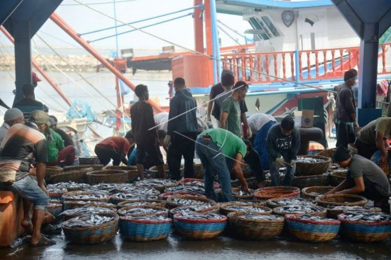 Nelayan Kesulitan Pasarkan Ikan Dampak Corona