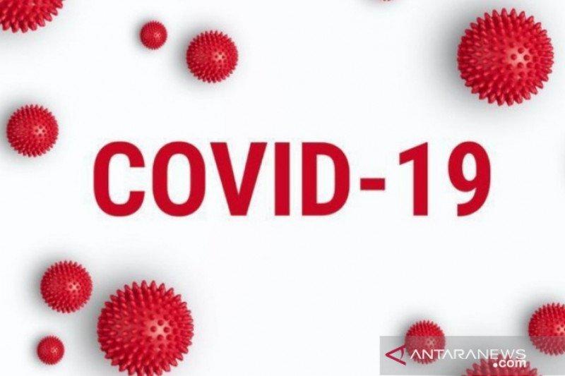 Ororitas Jepang tingkatkan stok Avigan untuk obati dua juta orang terkait COVID-19