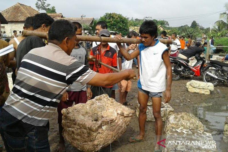 Harga getah karet di Ogan Komering Ulu anjlok