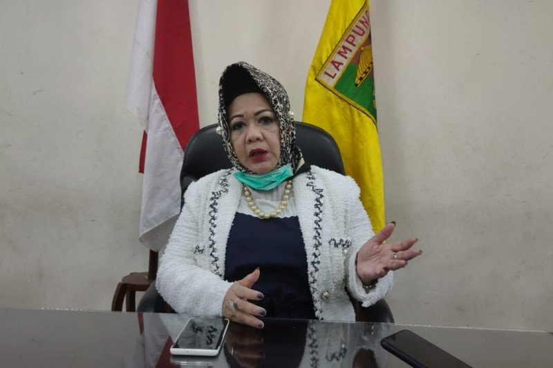 Dinkes akui Lampung kekurangan APD lengkap