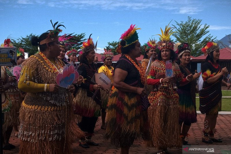 Transfer dana Otsus Papua Barat terhambat pandemi COVID-19