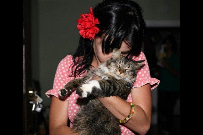 Katy Perry kabarkan kematian kucing kesayangannya