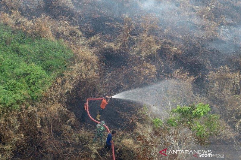 KLHK sebut PIPPIB untuk perbaikan tata kelola hutan dan lahan gambut