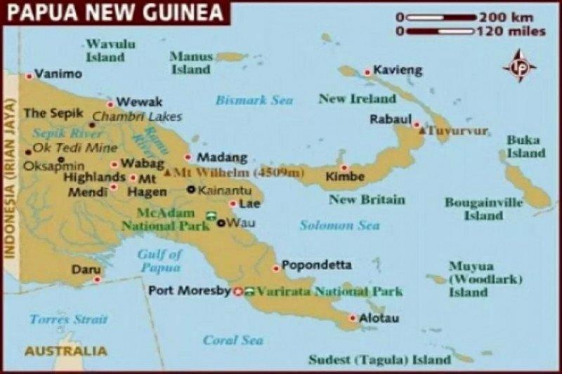Papua Nugini dipusingkan dengan flu babi Afrika