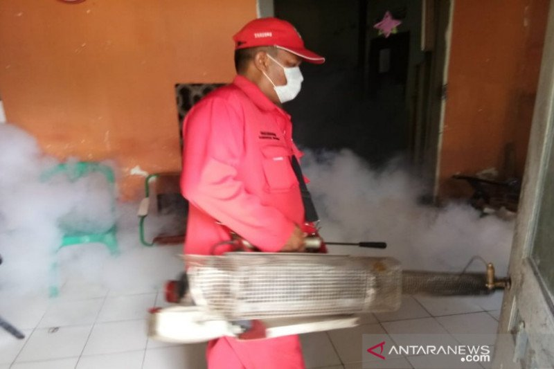 40 orang di Pekalongan terjangkit demam berdarah dengue