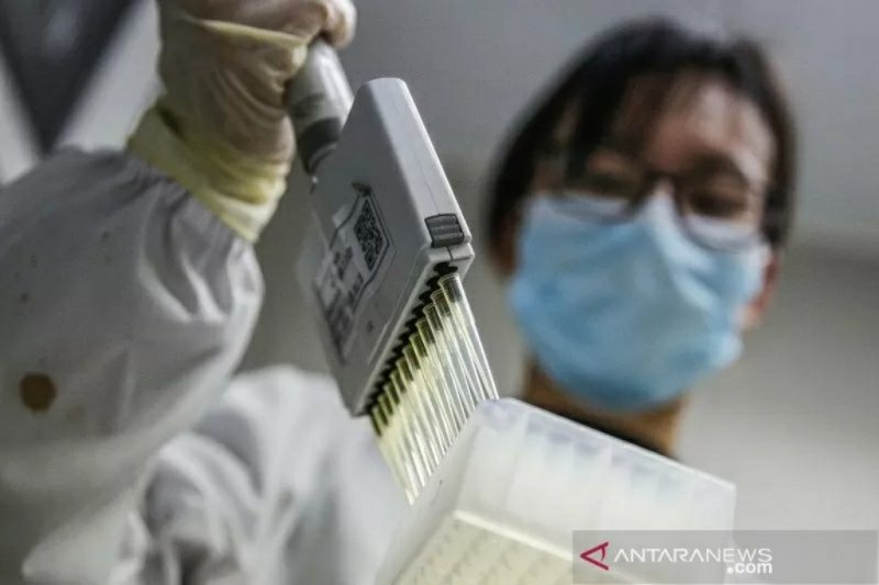 Profesor Tasuku Honjo bantah rumor China menciptakan virus corona