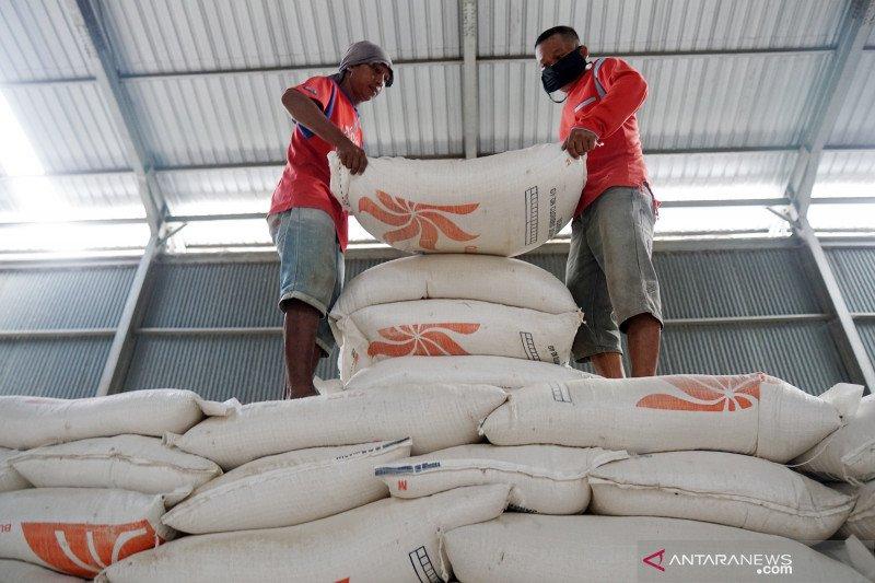 Peneliti CIPS: Pemerintah perlu antisipasi potensi kenaikan harga beras akhir tahun