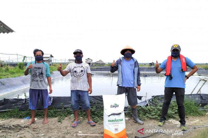 Cargill resmikan pakan udang dukung budi daya jangka panjang