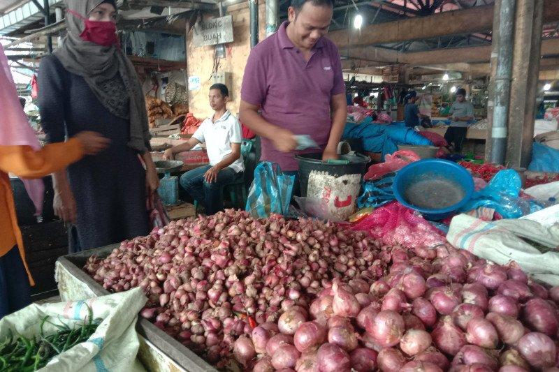 Harga bawang merah diperkirakan normal Juni, seiring panen di daerah sentra produksi