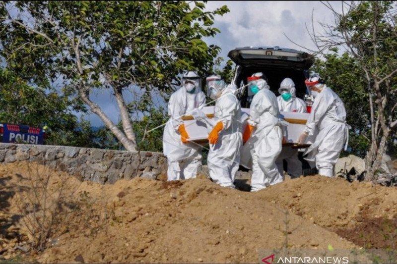 25 orang sembuh, 4 meninggal dari 115 positif COVID-19 di Sulteng