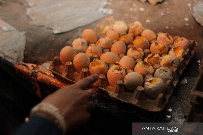Sidak pangan temukan telur berisikan embrio ayam