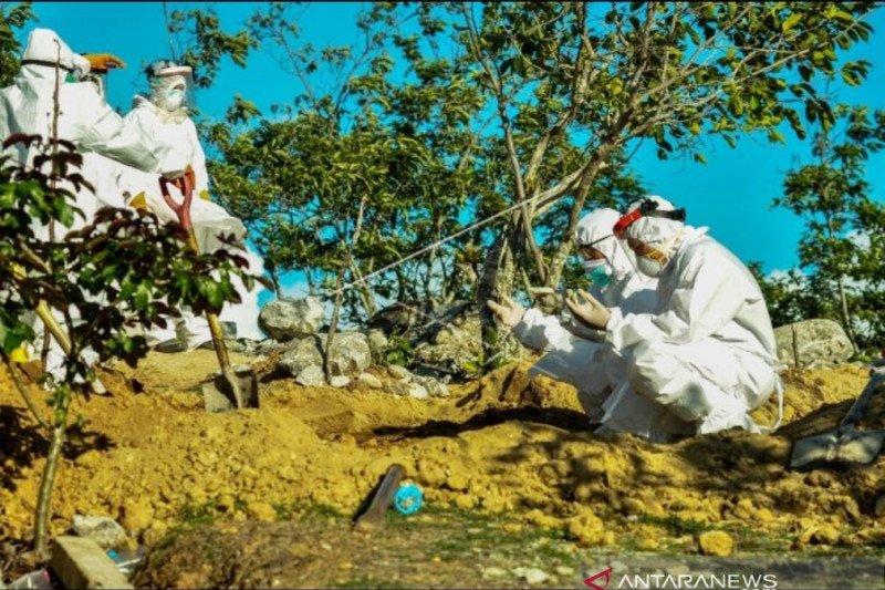 COVID-19 menginfeksi 115 warga Sulteng  namun 24 sudah sembuh