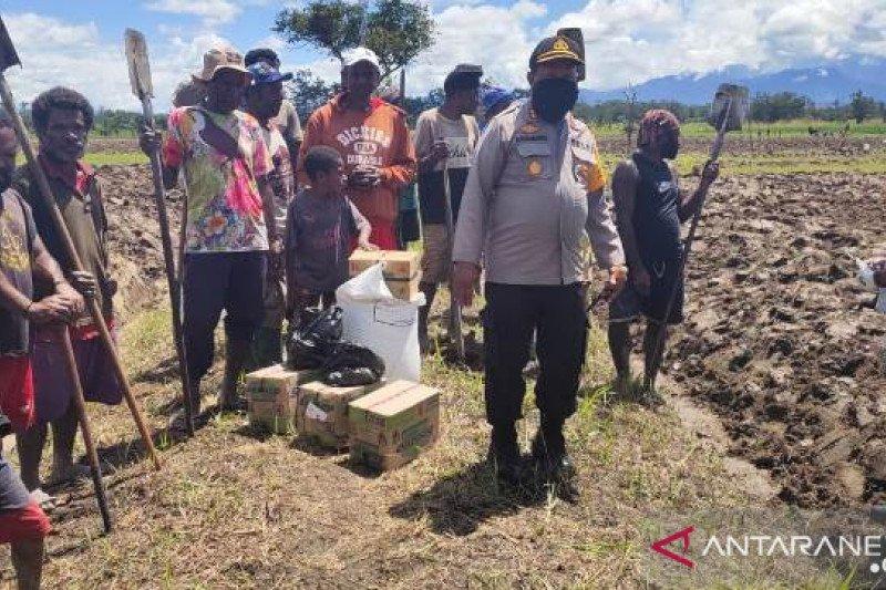 Masyarakat Jayawijaya cegah kelaparan dengan bercocok tanam pangan lokal